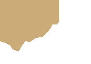 Vonk.online logo